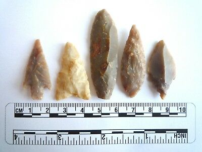Neolithic Arrowheads x 5, High Quality Selection of Styles - 4000BC - (2406)