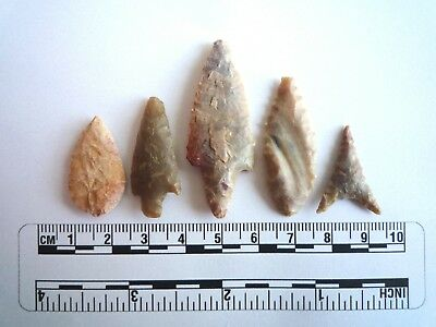 Neolithic Arrowheads x 5, High Quality Selection of Styles - 4000BC - (2408)