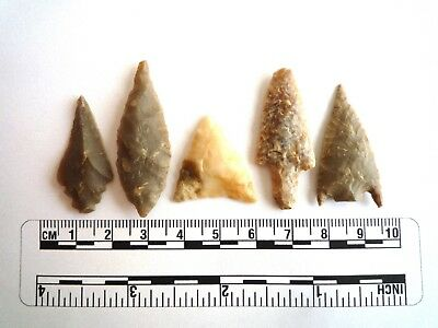 Neolithic Arrowheads x 5, High Quality Selection of Styles - 4000BC - (2434)