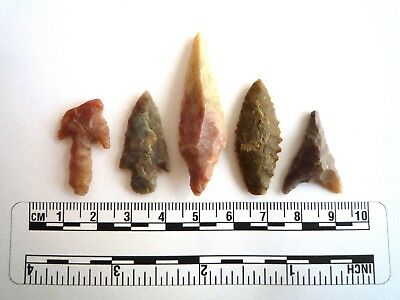 Neolithic Arrowheads x 5, High Quality Selection of Styles - 4000BC - (2437)