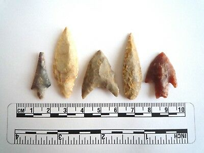 Neolithic Arrowheads x 5, High Quality Selection of Styles - 4000BC - (2420)