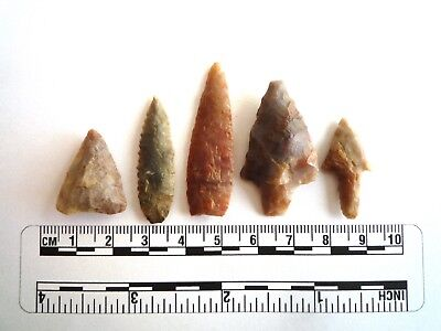 Neolithic Arrowheads x 5, High Quality Selection of Styles - 4000BC - (2447)