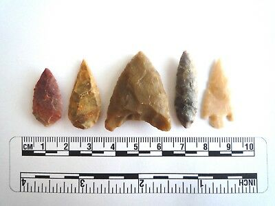 Neolithic Arrowheads x 5, High Quality Selection of Styles - 4000BC - (2411)