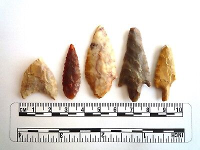 Neolithic Arrowheads x 5, High Quality Selection of Styles - 4000BC - (2446)