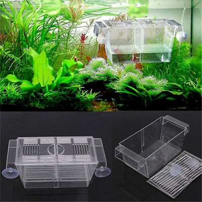 Aquarium Fish Tank Guppy Double Breeding Breeder Box Rearing Trap Hatchery Wide