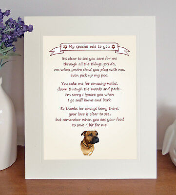 Staffordshire Bull Terrier Thank You FROM THE DOG 8 x 10 Picture/10x8 Print No4
