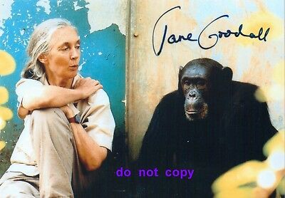Jane Goodall Autographed 5X7 Photo with Letter
