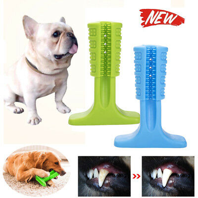 Brushing Stick Pets Molar Bristly Toothbrush Dog Puppy Oralcare Most Effective