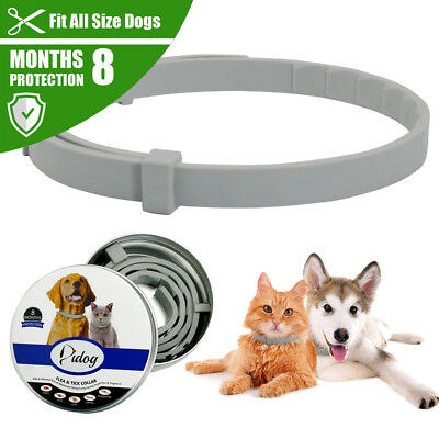 Dog Flea and Tick Collar Adjustable Cats Insect Repel Killer Prevent 8 Months