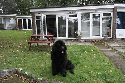 2 bedroom Holiday Chalet close to Snowdon dog friendly fishing walkers 7 nights