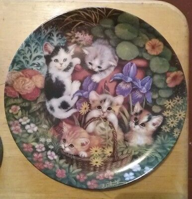 Decorative Plate With Kittens Cute Cute Cutr