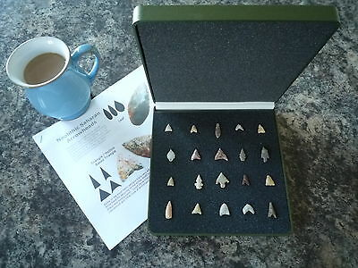 20 x Quality Miniature Neolithic Arrowheads in Display Case - 4000BC - (W031)
