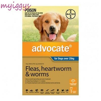 Advocate for Dogs Over 25kg BLUE 1, 2, 3 Pack & 6 Pack