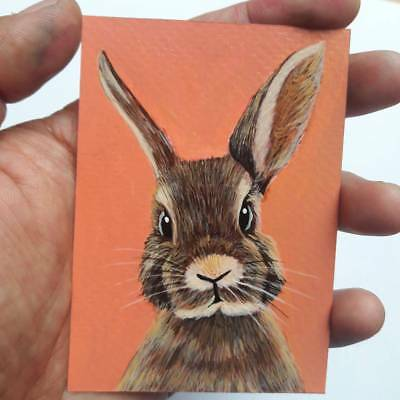 ACEO CARD rabbit Art Animal Original Painting  Acrylic  portrait  hare wildlife
