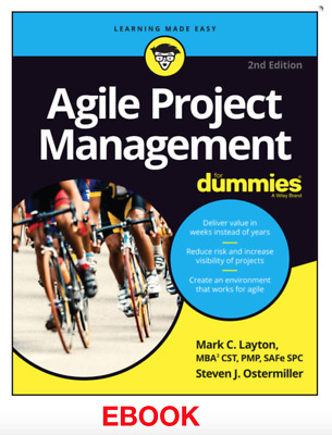 Agile Project Management For Dummies Mark Layton. Epub (same day delivery)