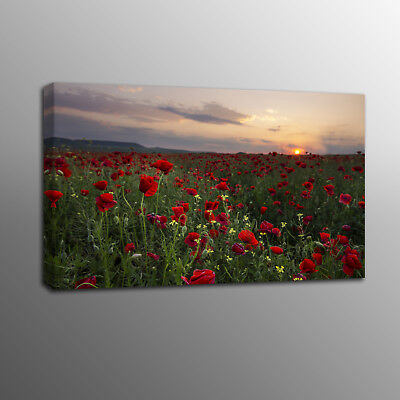 Canvas Prints Art Red Poppy Flowers Painting Wall Canvas Art Home Decor No Frame
