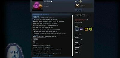 Steam Account / LVL 30 / R6S,pubg,payday 2, Terraria, Rocket League, Witcher 3
