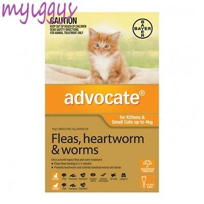 Advocate for Kittens & Cats under 4kg 1, 2, 3 Pack & 6 Pack