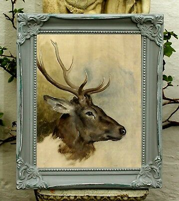 Excellent  Oleograph on Canvas - Portrait of  a Stags Head in profile