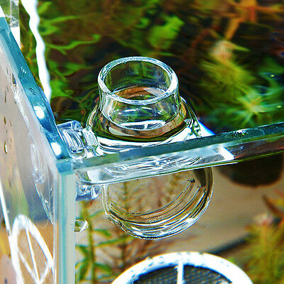 Crystal Glass Pot Plant Cup Holder Red Shrimp Aquarium Fish Tank Decor&~