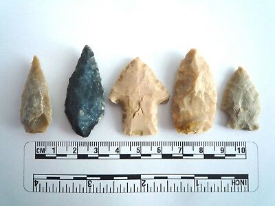 5 x Native American Arrowheads found in Texas, dating from approx 1000BC  (2242)