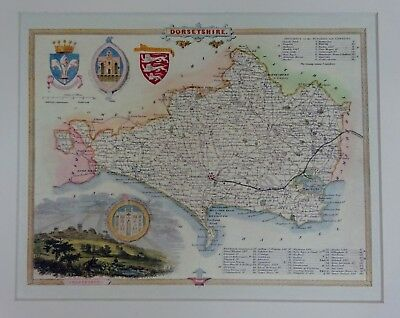 Old Stock Antique Reproduction Map of Dorset Card Mounted Quality Thomas Moule