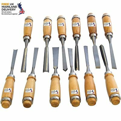 Brand New 12PC WOOD CHISEL SET BASIC WOODWORKING CARVING CHISELS