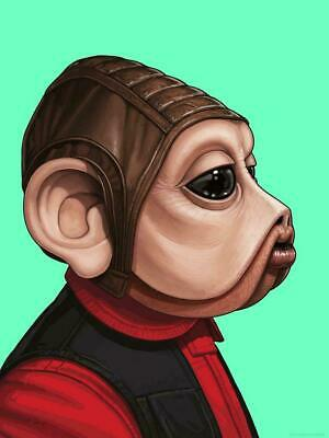 Nien Nunb - by Mike Mitchell Mondo Star Wars Poster Print XX/770