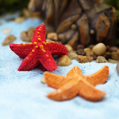 Starfish Miniatures Fairy Garden Micro Landscapes Resin Crafts Accessories JB