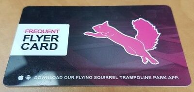 Flying Squirrel 8 Hour Toddler Pass (HAMILTON) - Mail Delivery