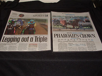American Pharoah Newspaper Laminated Page Belmont Stakes Triple Crown Horse Race