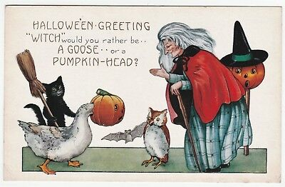 SUPER Halloween Postcard - Witch Goose w JOL Mask Black Cat Owl - Whitney c 1915