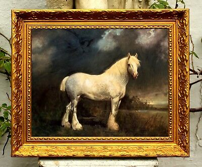 """Fine Oleograph on Canvas of a Grey Shire Horse """"Barrel"""""""