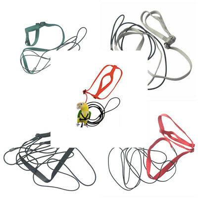 Adjustable Harness Leash For Parrot Outdoor Walking Traction Flight Rope
