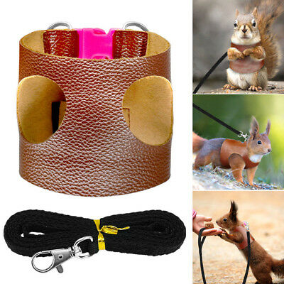 Guinea Pig Harness Squirrel Leash Leather Pet Vest Small Animal Hamster Leads