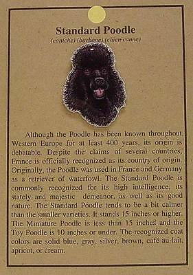 New  Standard Poodle  Dog Hat Pin Lapel Pins