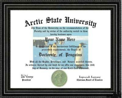 Penguin Lover's Doctorate Diploma / Degree Custom made & Designed for you UNIQUE