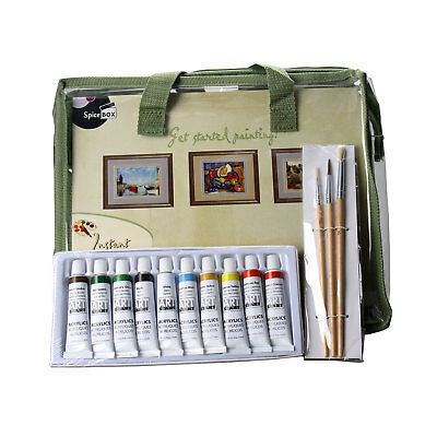 CANVAS ART BEGINNERS KIT Includes 10 Acrylic Paints, 5 Canvases, Brushes & MORE!
