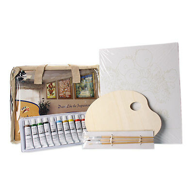 CANVAS ART BEGINNERS KIT Includes 12 Acrylic Paints, 5 Canvases, Brushes & MORE!