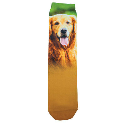 Women's Sublimated Dog Breed Socks - Golden Retriever
