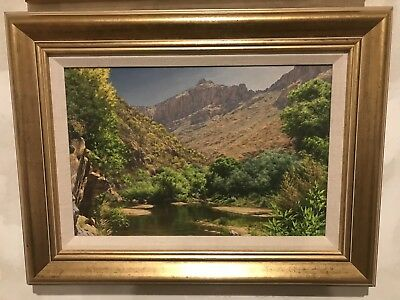 Tom Murray Artist - Oil Landscape Painting Of Sabino Canyon Arizona 2001