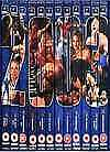 """WWE 2003"" DVD 12-DISC SET- Wrestlemania XIX, Rumble, Blood, Survivor Summerslam"