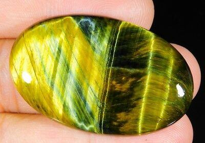 62 Ct Natural  Blue Pietersite Fire Tiger Eye Oval Cabochon Africa Gemstone A243