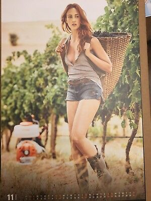 PACKAGE OF 2----2019 Stihl Calendar!!!  Women Working.  In hand ready to ship!!!