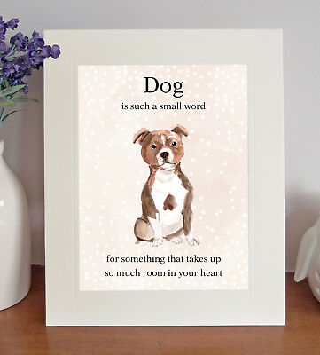 "Staffordshire Bull Terrier ""Dog is such a small word"" 8x10 Picture Print Gift"