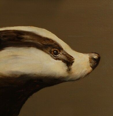 BADGER PORTRAIT : ORIGINAL OIL PAINTING : Wildlife Nature Art by David Andrews
