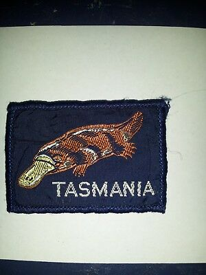 Vintage Australia Girl Guides or scouts? badge patch  brand new Tasmania