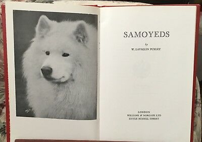 Samoyeds ~ Puxley ~ 1979 Hoflin ~ Samoyed dog book