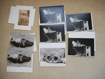 Black & White  Cat Blank Art Note Greeting Cards  lot of 8