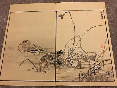 Antique JAPANESE WOODBLOCK Bird Print